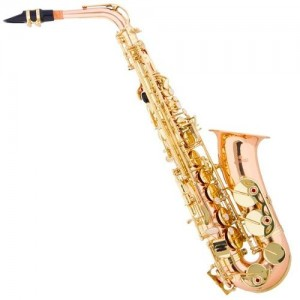 Moving BCN- embalaje de instrumentos musicales- saxo